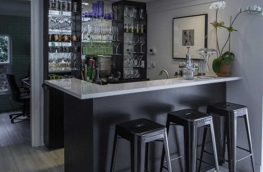 Seldes Tampa Designer Wet Bar