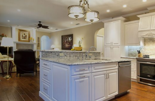 Seldes Tampa Kitchen and Living Redesign