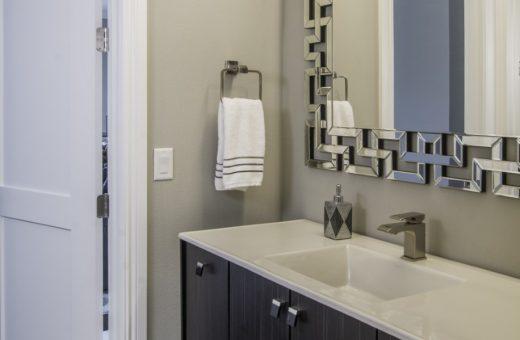 Seldes Tampa Designer Guest Bath