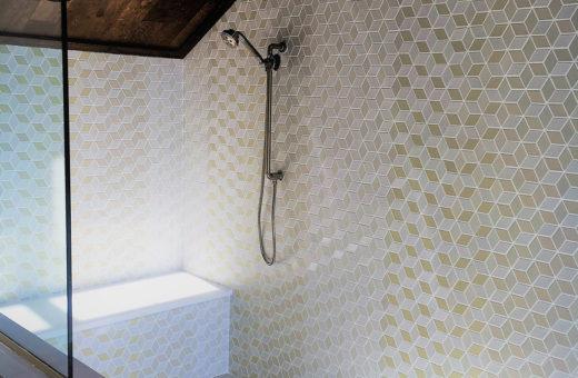 Johanna G Seldes IDC Tampa Designer Shower Remodel